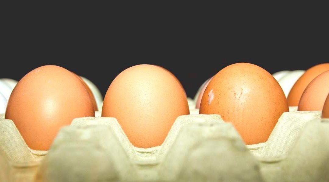 Conoce beneficios del huevo y su consumo