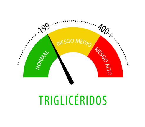 ¿Tienes los Triglicéridos altos o bajos?
